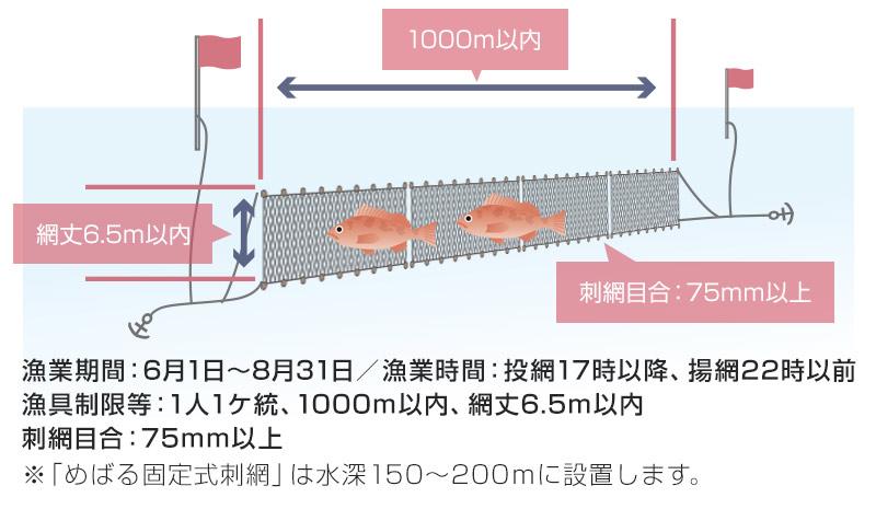 固定式刺し網漁業